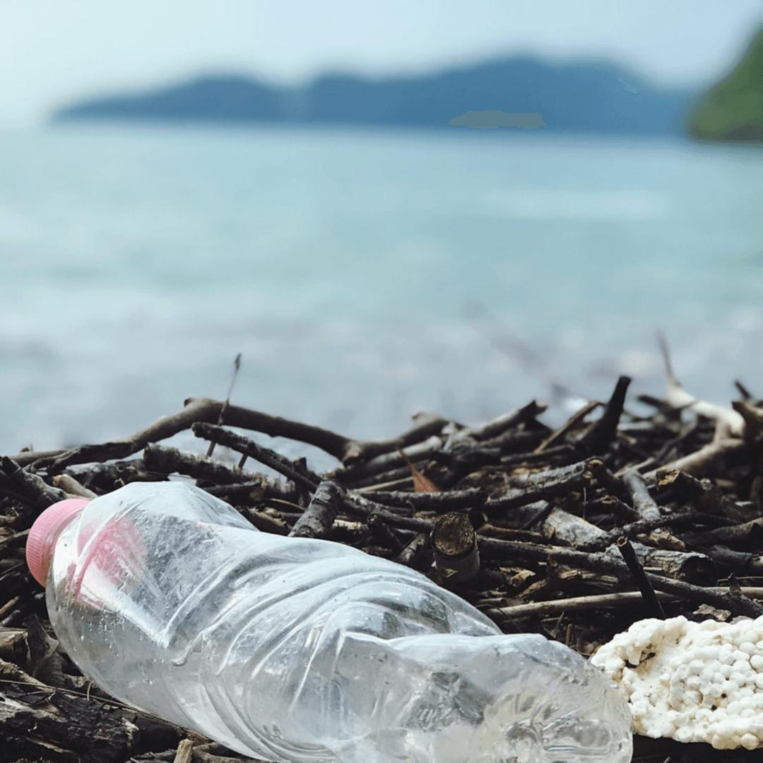 kaikua-strand-mit-plastikflasche